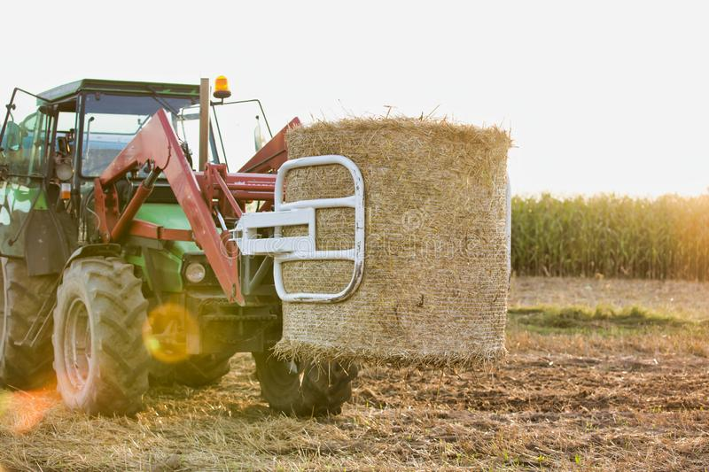 Photo of farm tractor, round bale hay in field with yellow lens flare in background stock photo