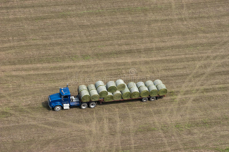 Download Farm Truck Loading Hay Bales For Dairy Cows Stock Photography - Image: 15399982