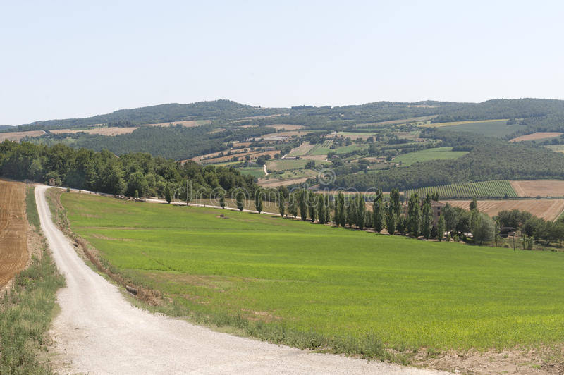 Download Farm in Umbria stock photo. Image of nature, scenic, summer - 23133164