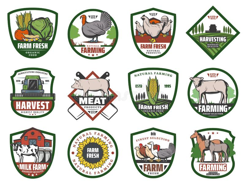 Farm vegetables, animals and birds, barn, tractor. Milk, meat and vegetable farm retro badges with vector animals and crop plants, agriculture design. Barn vector illustration
