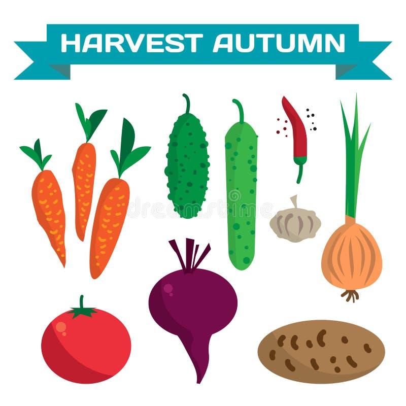 Farm vegetables flat cartoon set royalty free illustration