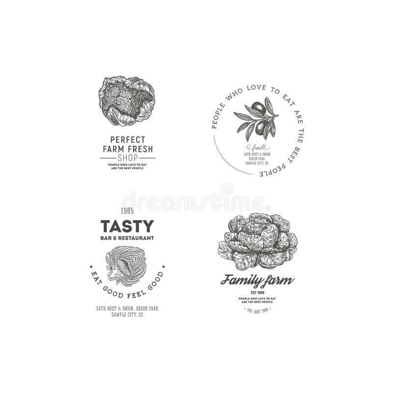 Farm vegetables vintage logo collection. Engraved logotype set. Vector illustration royalty free illustration