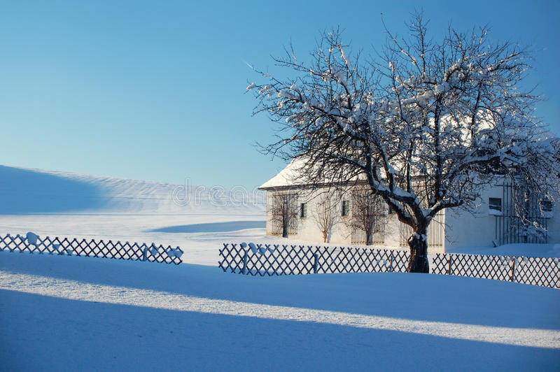 Download Farm In Winter Landscape Stock Photography - Image: 12699692