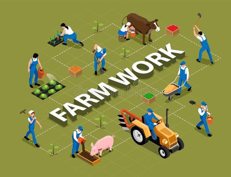Farm Work Isometric Flowchart. Farm work agricultural duties tools machinery isometric flowchart with milking cow feeding pig harrowing soil vector illustration stock illustration
