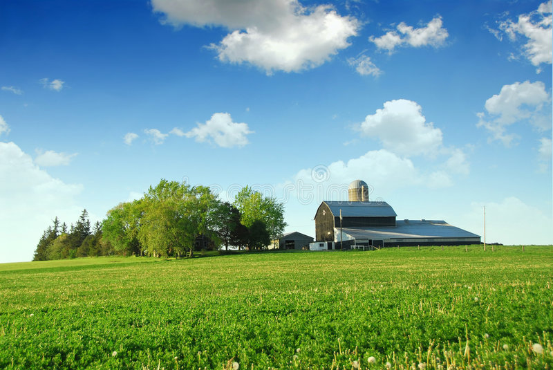 farma barn zdjęcia royalty free