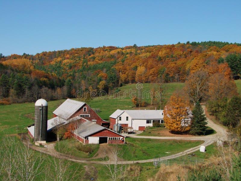 farma mleczarskim Vermont obraz stock