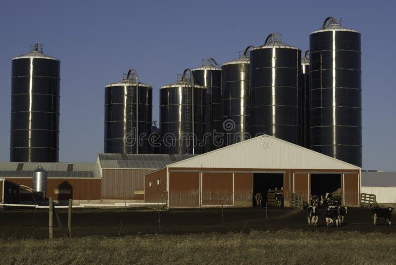 Farma mleka