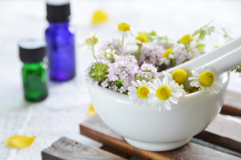 Farmacêutico natural com flor erval foto de stock
