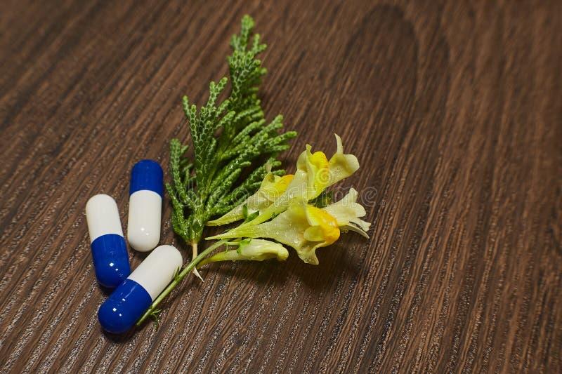 Farmaceutiskt nutraceutical blanda förpacka royaltyfri bild