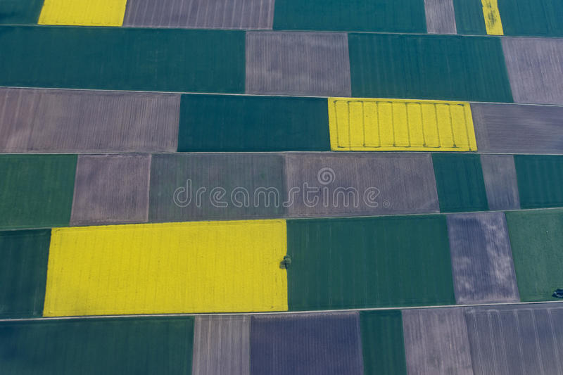 Farmed fields aerial view stock image