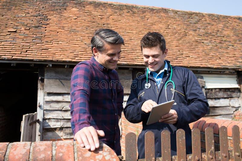 Farmer και κτηνίατρος που εξετάζουν την ψηφιακή ταμπλέτα από κοινού στοκ εικόνα