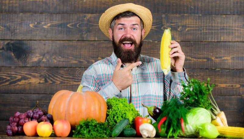 Farmer με τη homegrown συγκομιδών εμφάνιση χωρικών της Farmer αγροτική Αυξηθείτε τις οργανικές συγκομιδές Εύθυμη γενειοφόρος λαβή στοκ φωτογραφίες