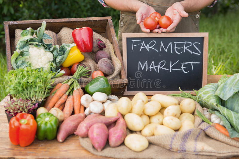 Farmer που πωλεί το οργανικό veg στην αγορά στοκ εικόνα με δικαίωμα ελεύθερης χρήσης