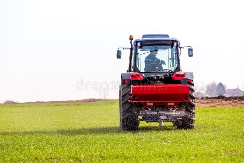 Farmer στον τομέα σίτου λίπανσης τρακτέρ στην άνοιξη με το npk στοκ εικόνες