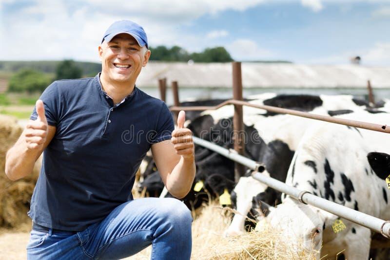Farmer στο αγρόκτημα με τις γαλακτοκομικές αγελάδες στοκ εικόνες με δικαίωμα ελεύθερης χρήσης