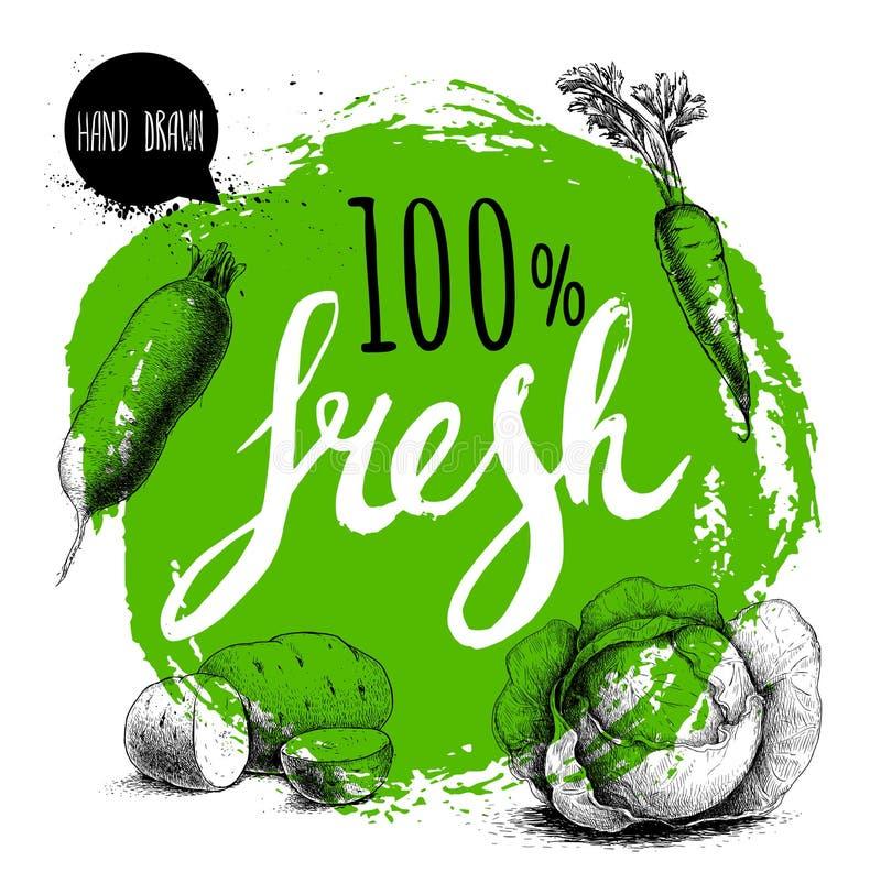 Farmer 100% φρέσκο πρότυπο σχεδίου veggies Πράσινος τραχύς κύκλος με χρωματισμένες τις χέρι επιστολές Λαχανικά ύφους σκίτσων χάρα ελεύθερη απεικόνιση δικαιώματος