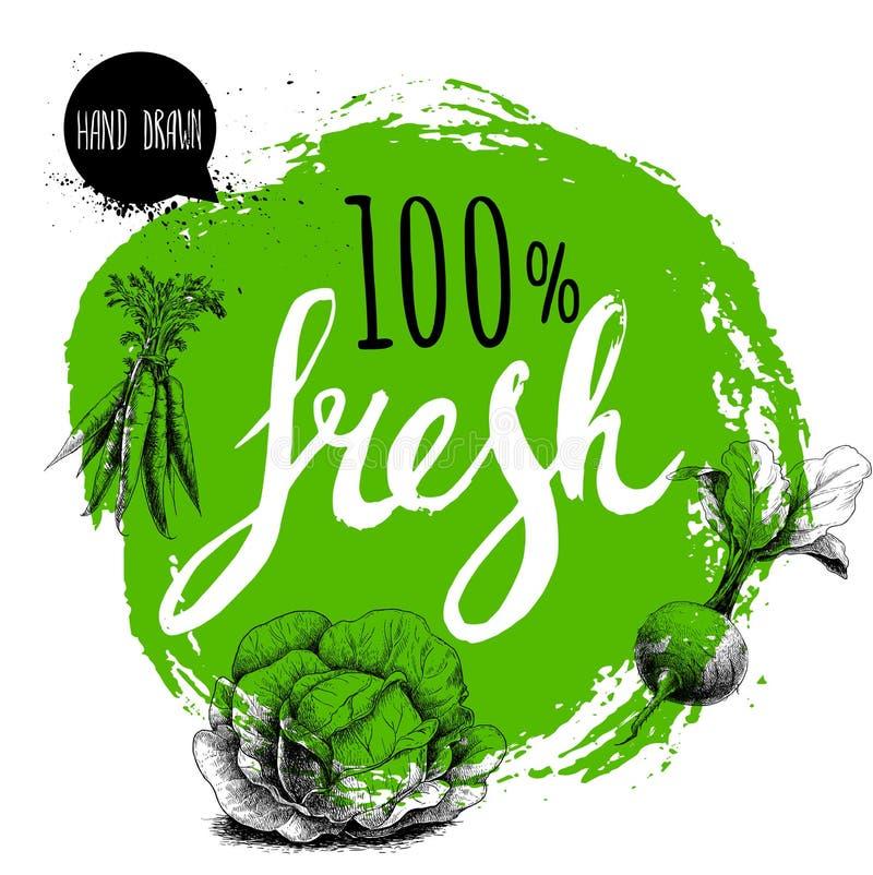 Farmer 100% φρέσκο πρότυπο σχεδίου veggies Πράσινος τραχύς κύκλος με χρωματισμένες τις χέρι επιστολές Λαχανικά ύφους σκίτσων χάρα διανυσματική απεικόνιση