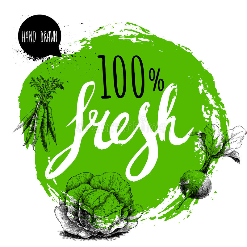 Free Farmer 100 Fresh Veggies Design Template. Green Rough Circle With Hand Painted Letters. Engraving Sketch Style Vegetables. Carrot Stock Photos - 91066943