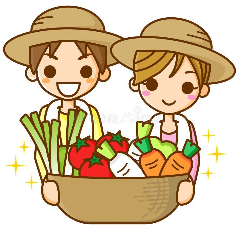 Download Farmer stock illustration. Image of vegetables, tomato - 23454821