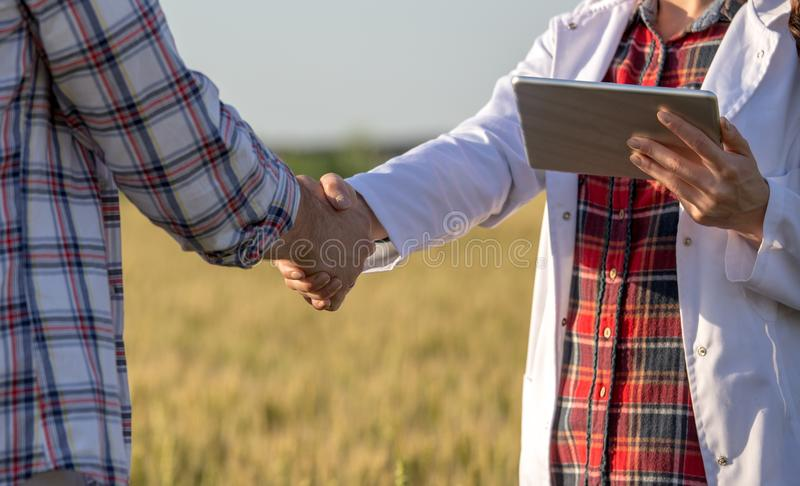 Farmer and agronomist shaking hands in field stock photo