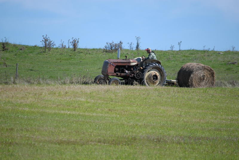 Farmer baling rolls of hay with antique tractor stock image