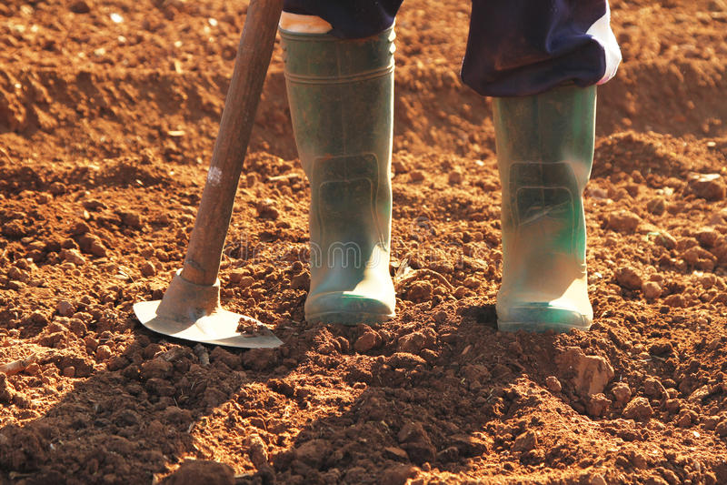 Farmer boots stock photos