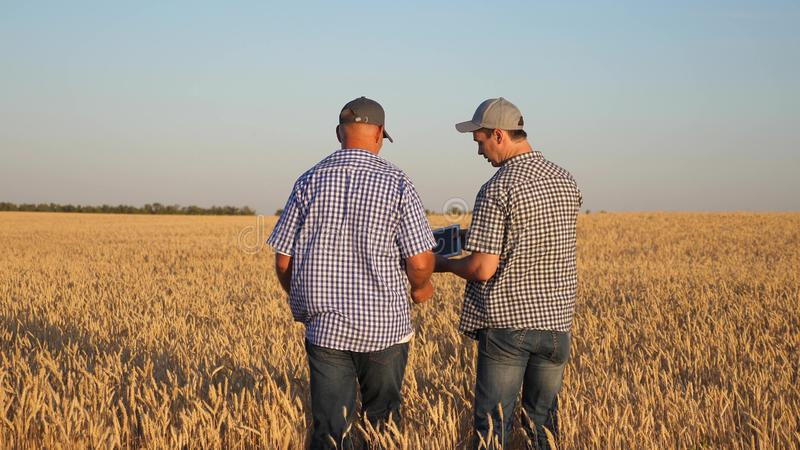 Farmer and businessman with tablet working as a team in field. agronomist and farmer are holding a grain of wheat in stock photography