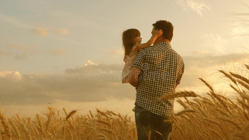 Farmer carries a little daughter in his arms through a field of wheat. happy child and father are playing in field of royalty free stock photos
