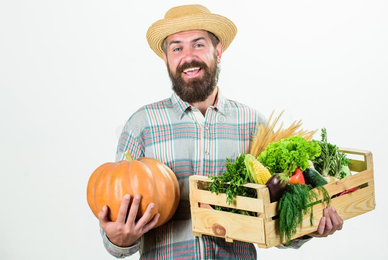 Farmer carry harvest. Locally grown foods. Farmer lifestyle professional occupation. Buy local foods. Farmer rustic. Bearded man hold wooden box with homegrown stock images
