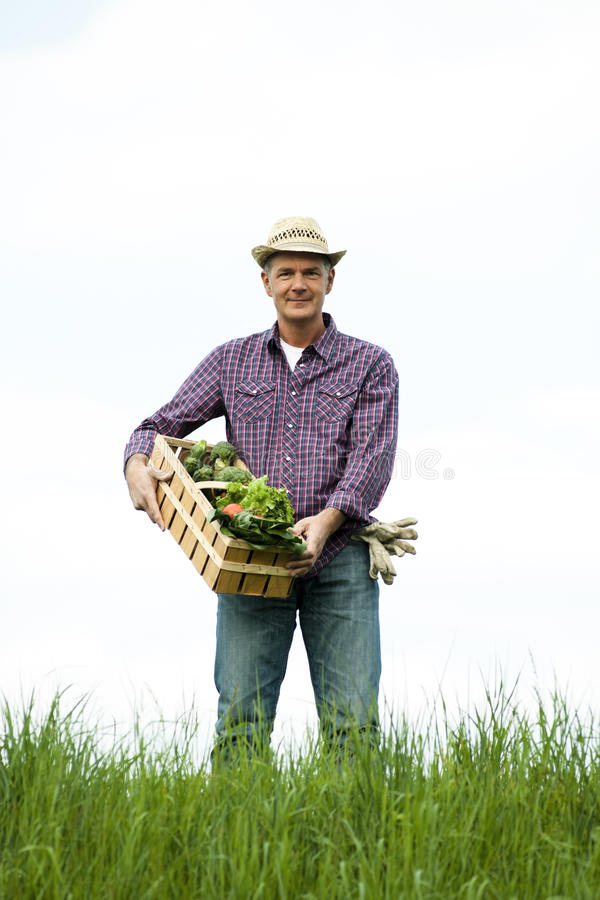 Download Farmer Carrying  A Crate Of Vegetables Stock Photo - Image of positivity, holding: 22130118