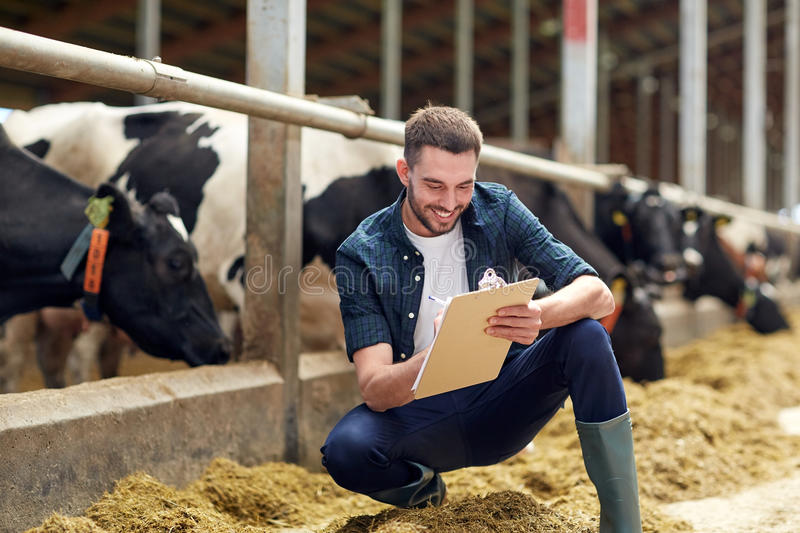 Farmer with clipboard and cows in cowshed on farm. Agriculture industry, farming, people and animal husbandry concept - happy smiling young man or farmer with royalty free stock image