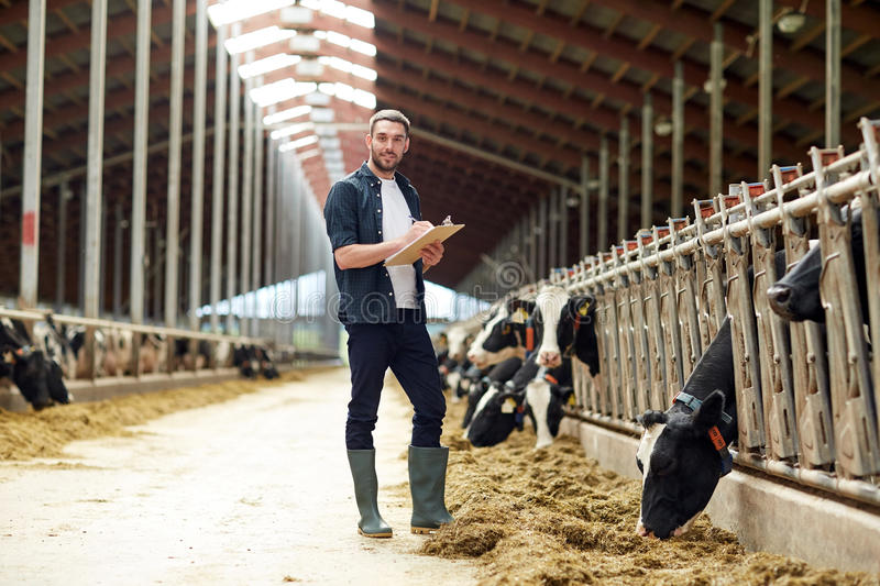 Farmer with clipboard and cows in cowshed on farm. Agriculture industry, farming, people and animal husbandry concept - happy smiling young man or farmer with stock photos