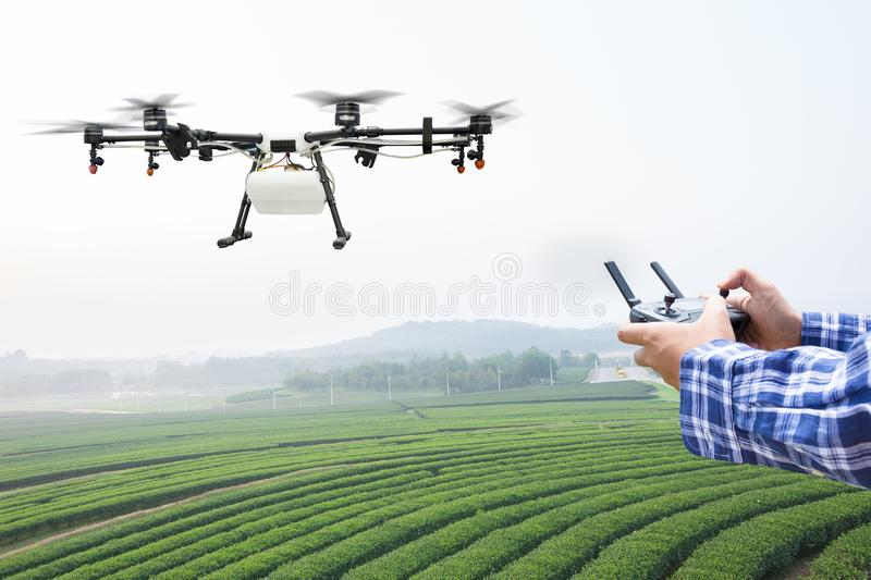 Farmer Control Agriculture Drone Fly To Sprayed On Corn Field Stock