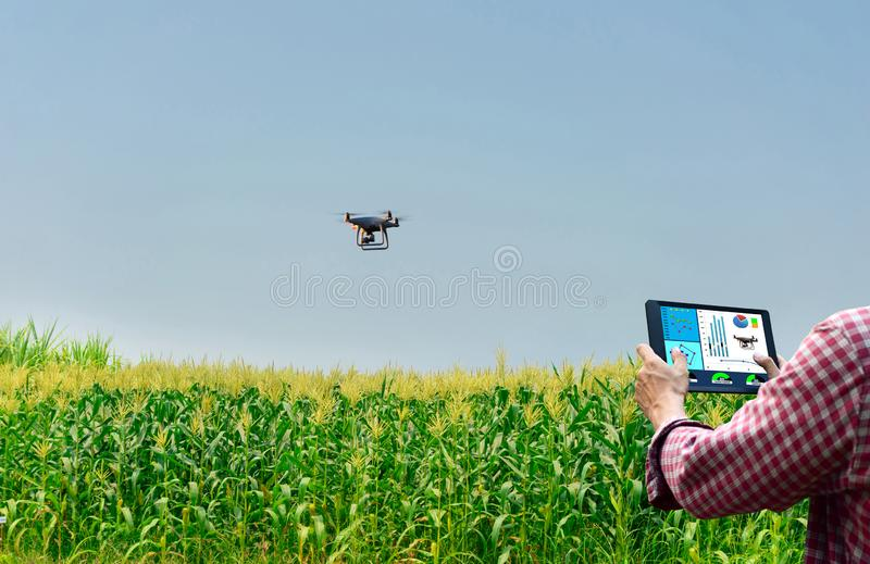 Farmer control unmanned aircraft Dorn Corn agricultural automation,digital farming royalty free stock photo