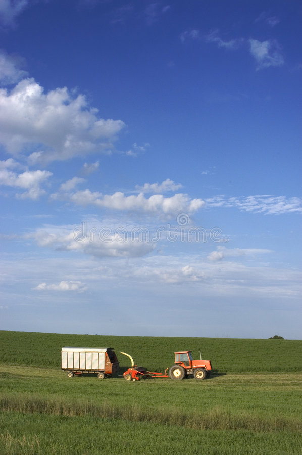 Farmer Cutting Hay royalty free stock images