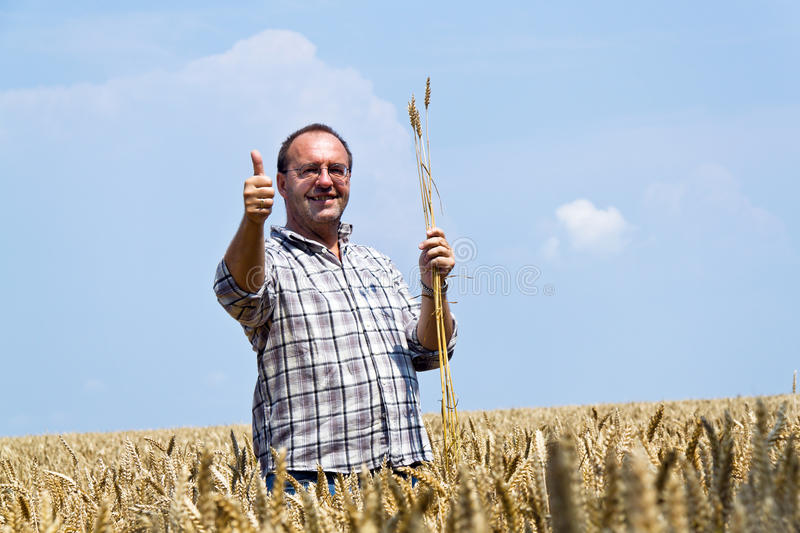 Farmer - Farmer in the cereal box. royalty free stock images