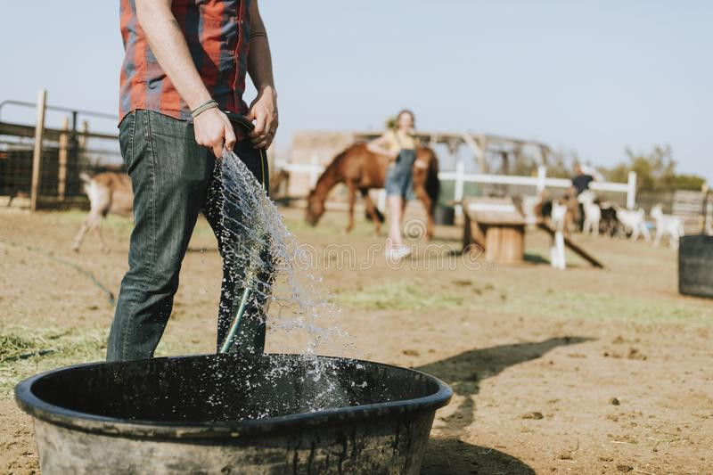 Farmer filling a tub with water stock image
