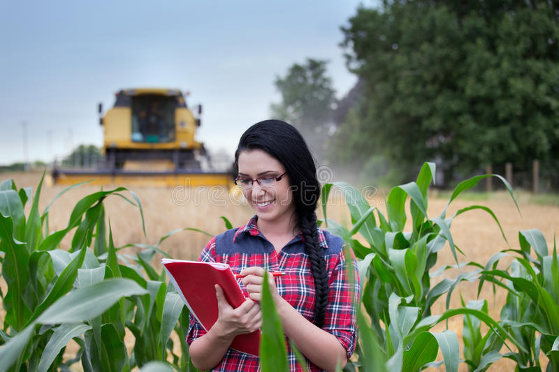 Farmer girl on field with combine harvester royalty free stock photography