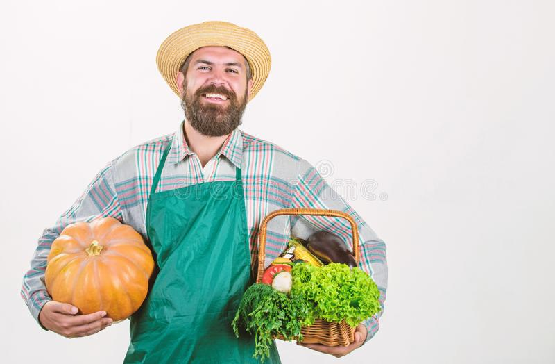 Farmer guy carry big pumpkin. Locally grown foods. Local farm. Farmer lifestyle professional occupation. Farming and. Agriculture. Farmer wear apron hold stock photography