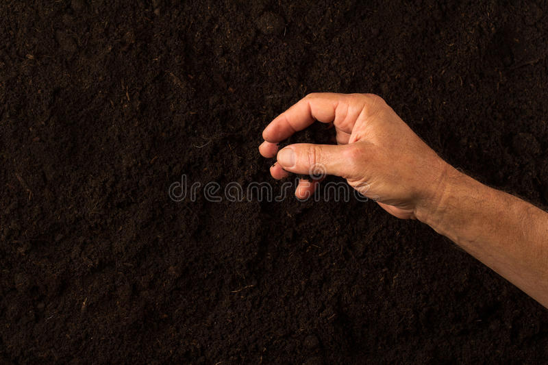 Farmer hand checking the soil on dark background. Top view of farmer hand checking the soil on dark ground background royalty free stock photo