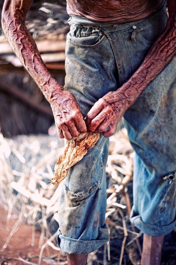 Download Farmer hands stock image. Image of poor, texture, peasant - 22544017