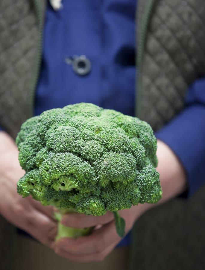 Farmer holding fresh broccoli royalty free stock photos