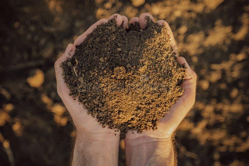Farmer holding pile of soil on fertile agricultural land stock images