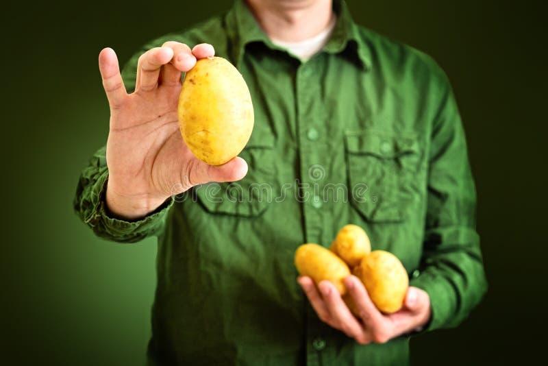 Farmer Holding Potato Stock Images