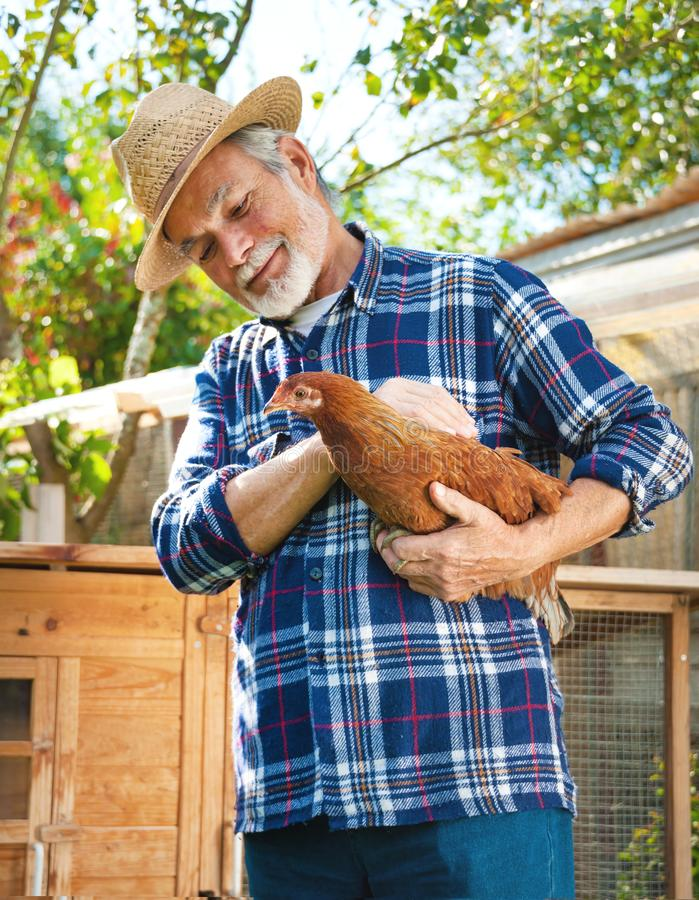 Farmer holds chicken in his arms in front of hen house stock photo