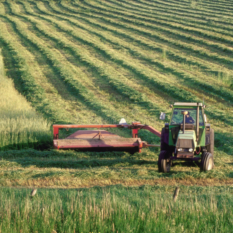 Free Farmer On Tractor In Field Stock Photos - 4580513