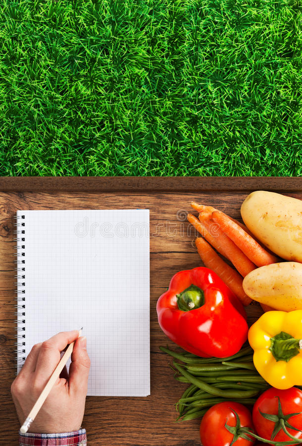 Farmer's notebook with vegetables royalty free stock images