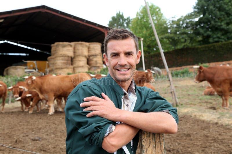 Download Farmer's portrait stock photo. Image of barn, herd, animals - 26819138
