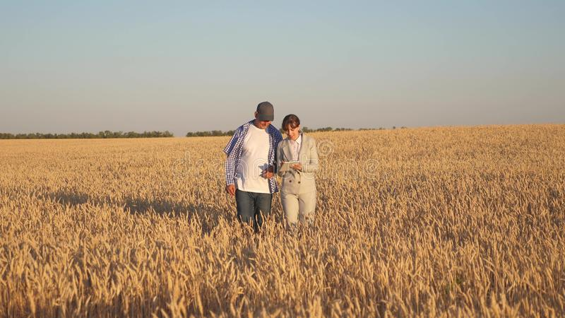 Farmer sells wheat grain to a business woman. business woman with tablet and farmer teamwork in a wheat field. Business. Farmer sells wheat grain to business stock photography