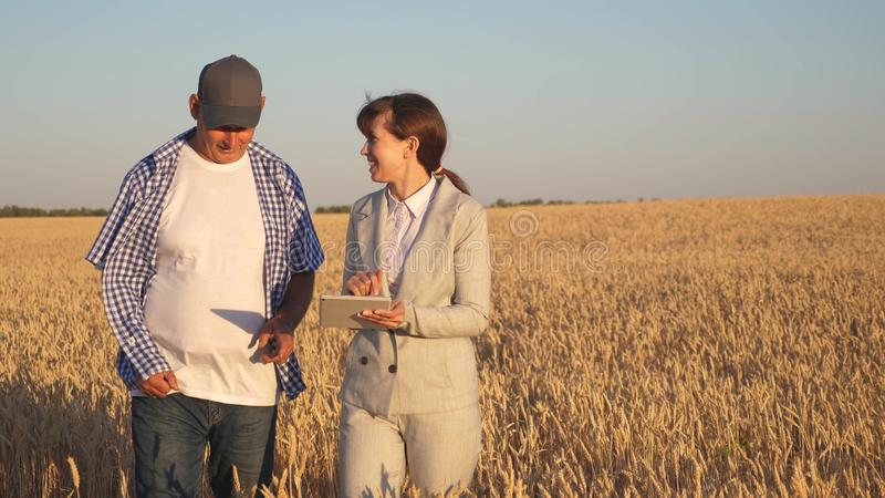 Farmer sells wheat grain to a business woman. business woman with tablet and farmer teamwork in a wheat field. Business. Farmer sells wheat grain to business royalty free stock images